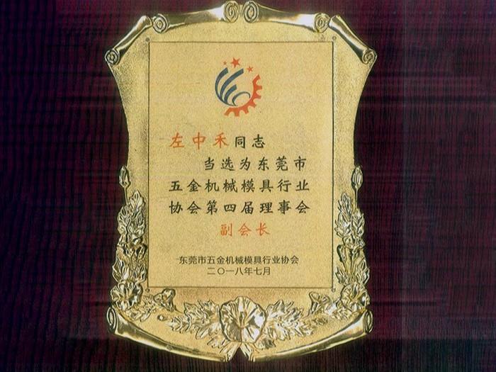 马驰科 东莞市五金机械模具行业协会副会长