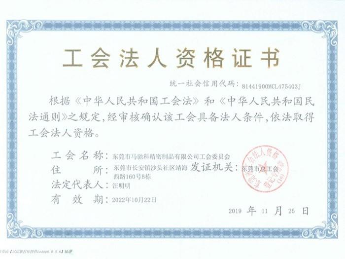 马驰科 工会法人资格证书